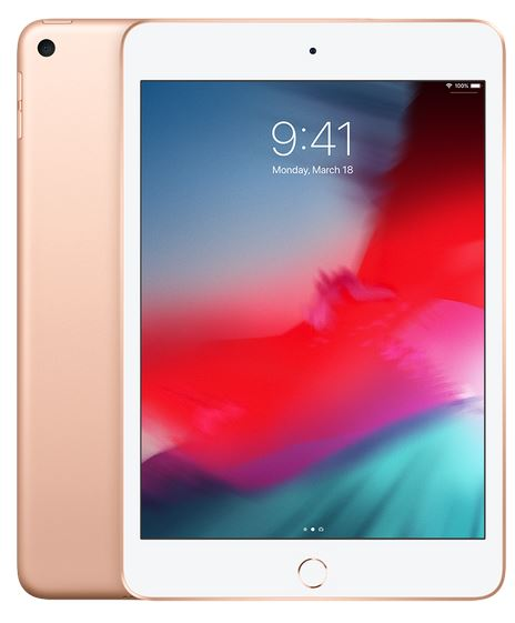 iPad mini Wi-Fi + Cellular 256GB - Gold