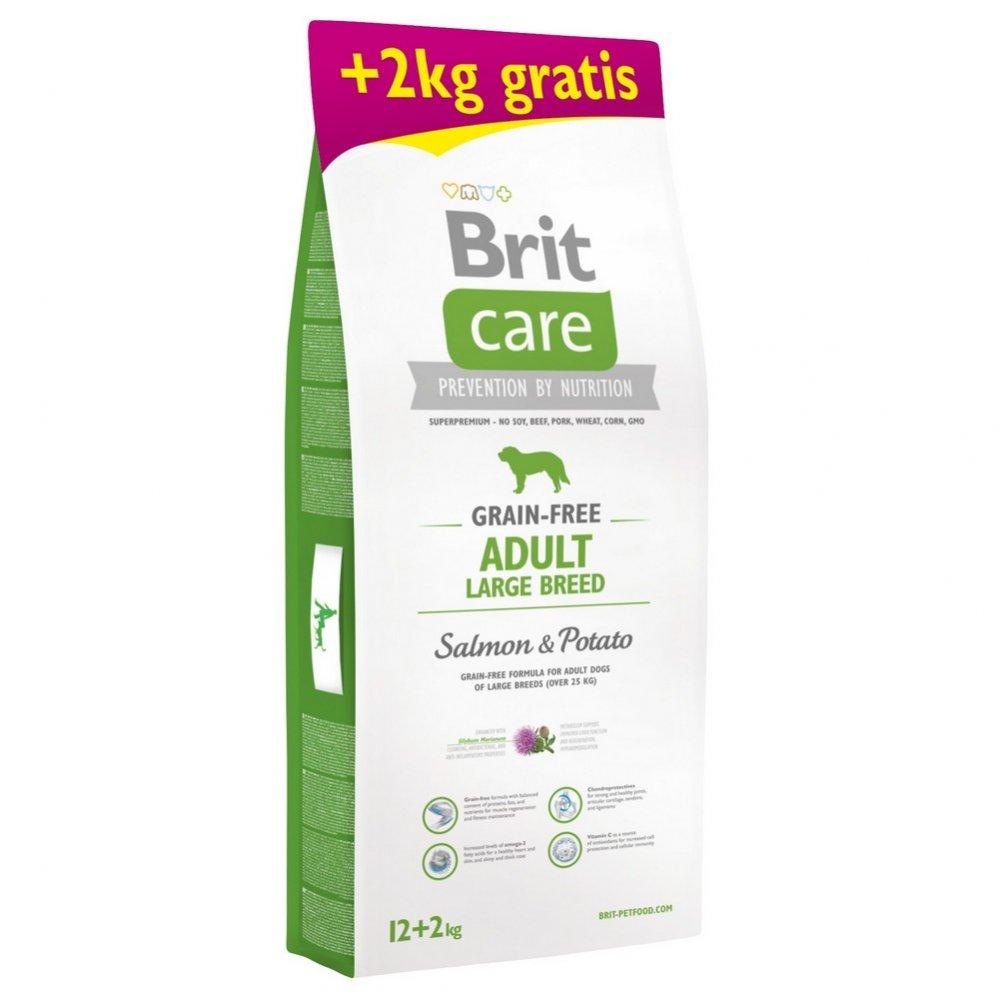 BRIT CARE GRAIN-FREE ADULT LARGE BREED SALMON & POTATO 12+2 KG (294-170694)