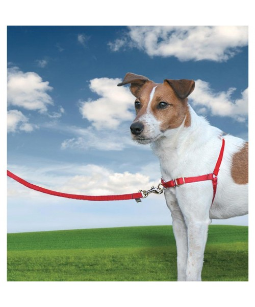 PETSAFE EASY WALK HARNESS - SMALL RED