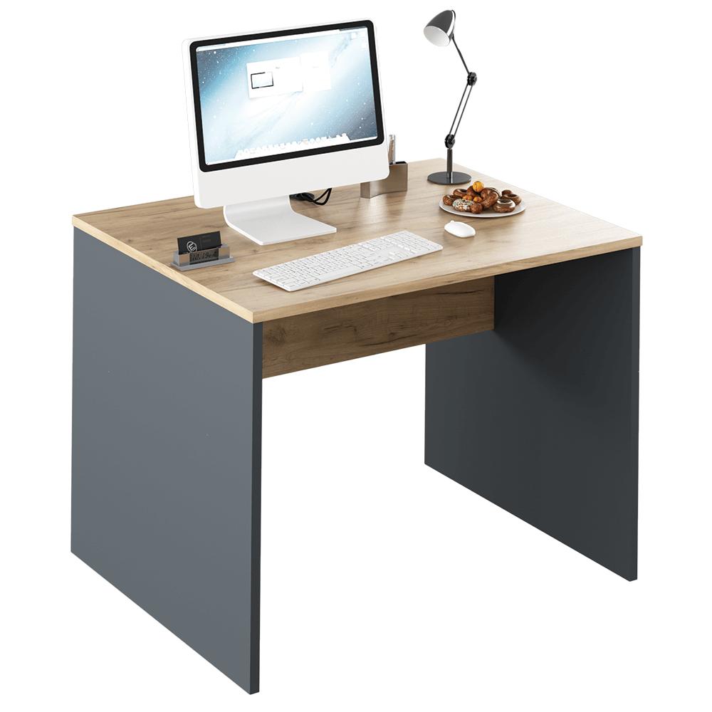 TEMPO KONDELA Písací stôl, grafit/dub artisan, RIOMA NEW TYP 12