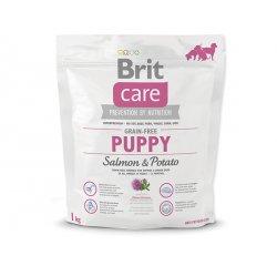 BRIT CARE GRAIN-FREE PUPPY SALMON & POTATO 1 KG (294-132720)