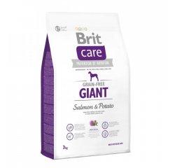 BRIT CARE GRAIN-FREE GIANT SALMON & POTATO 3 KG (294-132731)