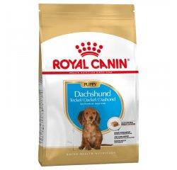 ROYAL CANIN BHN DACHSHUND PUPPY 1,5 KG