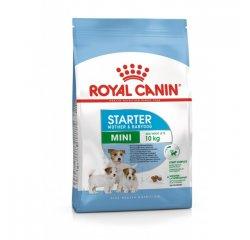 ROYAL CANIN SHN MINI STARTER M&B 3KG