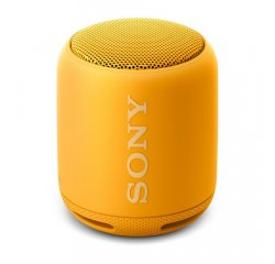 SONY SRS-XB10Y
