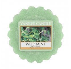 YANKEE CANDLE 1542821E VONNY VOSK WILD MINT